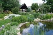 Затишок і гармонія природнього саду: