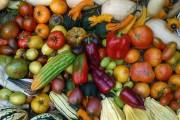 Працюємо на урожай: поради досвідченого городника