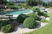 Коли каміння квітне: особливості облаштування гравійного саду