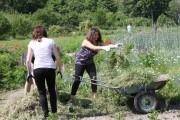Дачні навантаження: як вберегти здоров'я під час весняних робіт