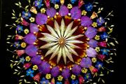 Флористична релаксація: створюємо квіткову мандалу у техниці ошібана