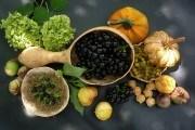 Добрі в будь-яку погоду: пасльонові культури на городі