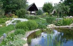 Затишок і гармонія: принципи створення природного саду