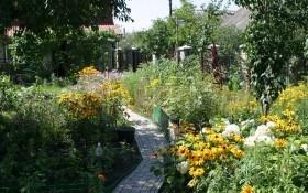 «Одежинка» для стежинки: вибираємо покриття для садових доріжок