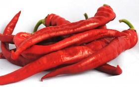 Червоний перець: корисні властивості та протипоказання