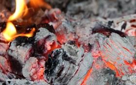 З печі в землю: підживлення рослин золою та попелом