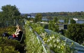 Висячий сад на крыше Варшавского университета