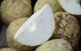 Сельдерей: корнеплоды для здоровья