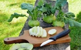 Північний лимон: харчові властивості та користь капусти кольрабі