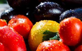 Выращиваем томаты, перец и баклажаны. 10 советов от читателей