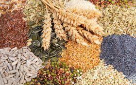Семена: выбор, защита, хранение