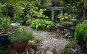 Театр теней: как создать красивый тенистый сад?