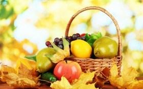 4 важных агромероприятия: что необходимо сделать в саду сентябре?