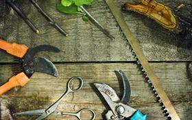 Выбираем инструменты для обрезки сада