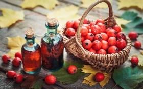 Боярышник: целебные свойства, применение в народной медицине