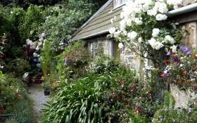 Стриманість та індивідуалізм: естетика англійського саду