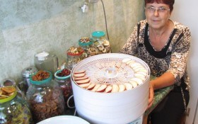 Вітаміни з сушарки: робимо запаси на зиму