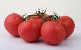 Новинки сортів томату від ТМ Lucky Seed
