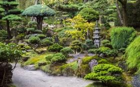 Гармонія Всесвіту у воді і камені: основи створення японського саду