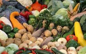 Бережи свій врожай: особливості збору і зберігання огірків, помідорів, перцю, баклажанів