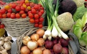 Захист рослин з думкою про людей та турботою про врожай