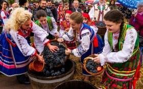 Что происходит с виноделием в Украине