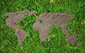 Забота о планете начинается с земли: отмечаем Всемирный день почв