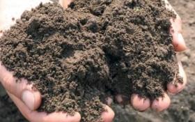 Как определить реакцию почвенной среды