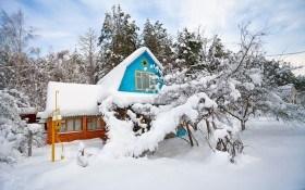 Зимние морозы и разрыхление почвы