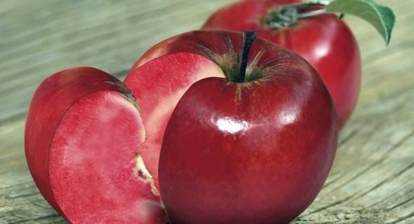 Барви життя: сорти яблунь з кольоровою м'якоттю