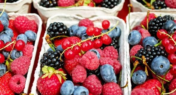 Розрахуйте свій врожай: як підживлювати ягідні культури для високої продуктивності