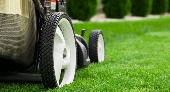 Лучшие друзья газона: выбираем удобную газонокосилку