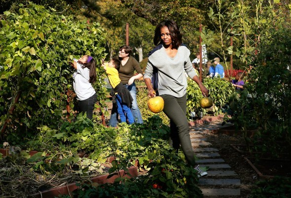Мишель Обама с тыквами на огороде