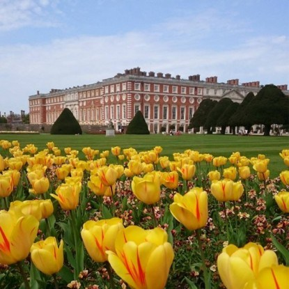 Дворец hampton court palace