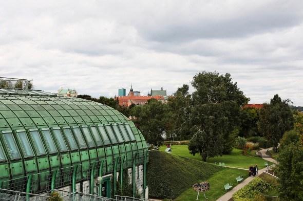 Сад на крыше Ogrod BUW