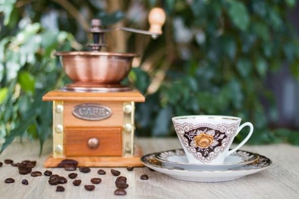 Выращивание кофе в защищенном грунте