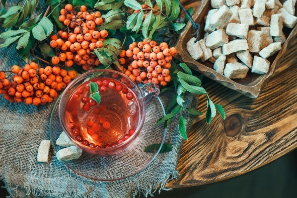 Рябина плоды стол чай