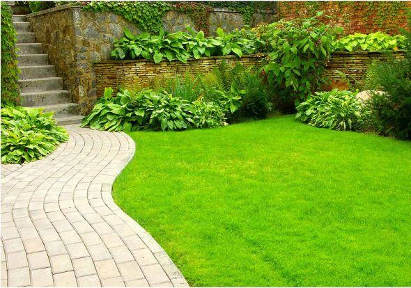 Идеальный зеленый газон: уход по правилам