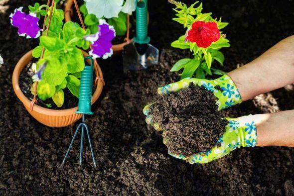 Подготовка почвы под цветники: с чего начать?