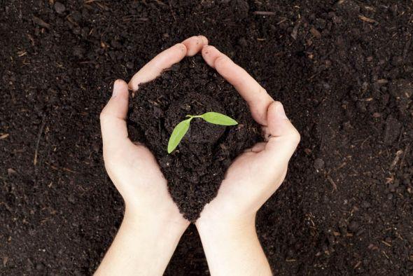 Весеннее внесение удобрений — залог высокого урожая