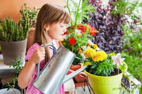 Балкон-цветник: как оформить мини-сад у себя дома