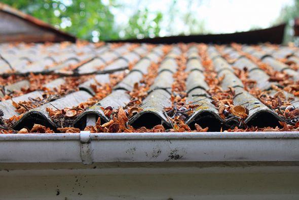 Правильные водостоки защищают стены вашего дома