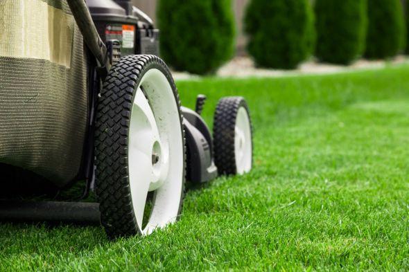 Особенности газонокосилок