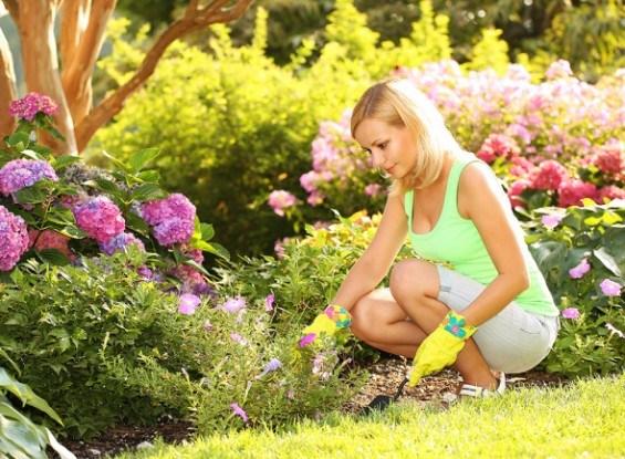 Девушка начинающий садовод