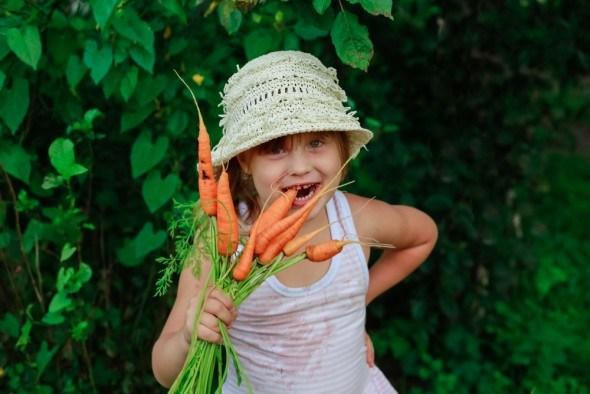 Девочка ест немытую морковку