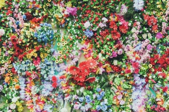 Таємна чарівність запашних рослин: як створити сад ароматів