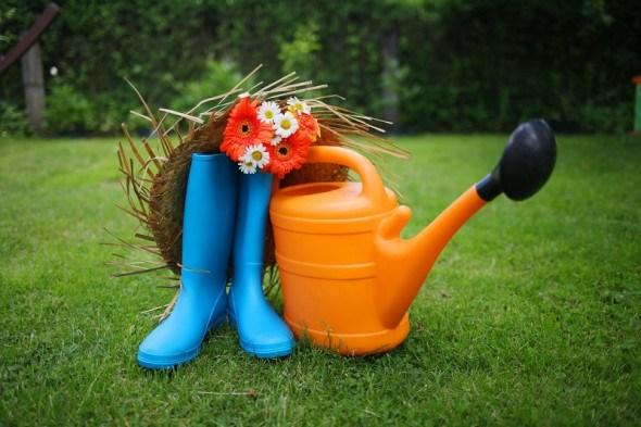Ідеально зелений: як підтримувати красу газону