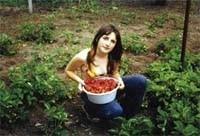 Прибыльная ягода
