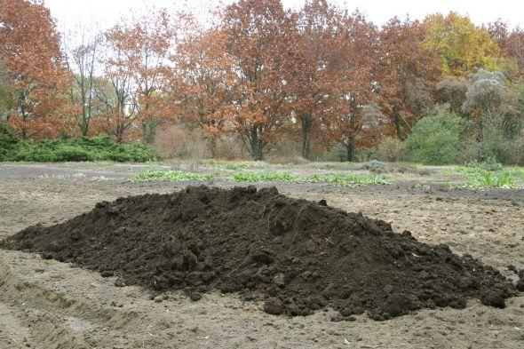 Способы как повысить плодородие песчаной почвы