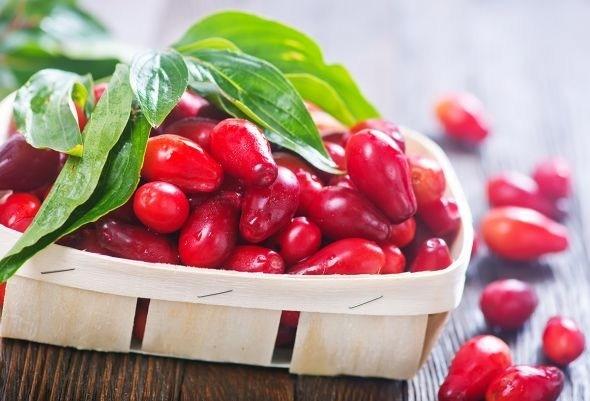 Плоды кизила, как свежие, так и переработанные, необычайно вкусны, полезны и обладают лечебным действием